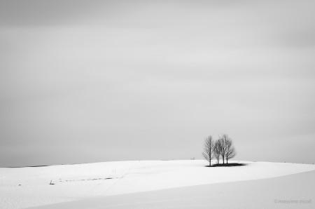 La serenità - serenity